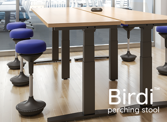 Introducing the Birdi perching stool