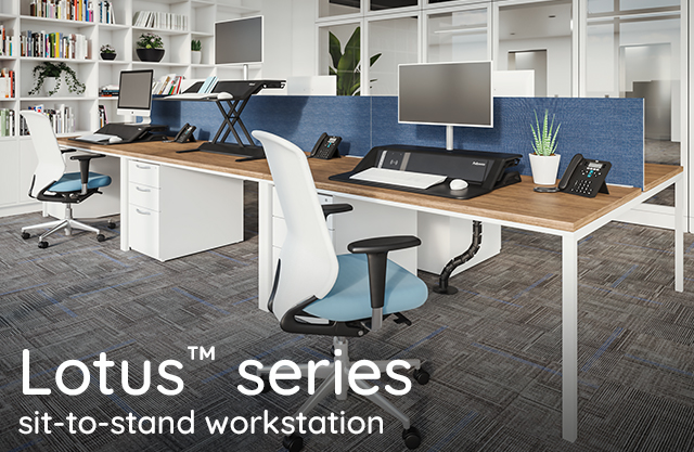 Introducing the Lotus series sit-to-stand workstations